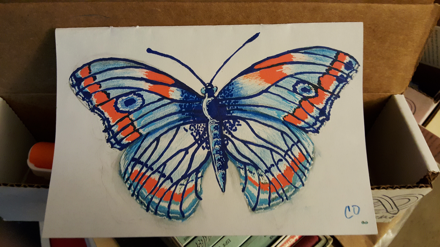 artsnacks-butterfly